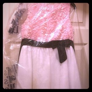 Lovely pink rose, black and white dress